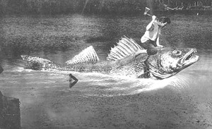 Riding giant fish